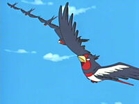 EP406 Swellow usando Doble equipo