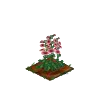 Wither Bunch Hollyhock-icon