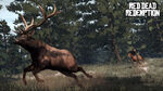 Rdr elk hunt