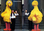 Buffy-bigbird