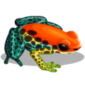 OddFrogs Orange-icon