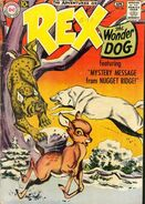 Rex the Wonder Dog 38