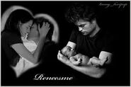 Reneesme5