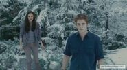 Bella&amp;Edward