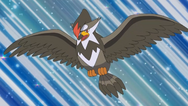 Ash Staraptor