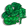 Spinach-icon
