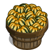 Carnival Squash Bushel-icon