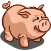 Pink Pot Belly Pig-icon