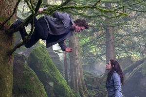 Edward-bella-tree-hanging
