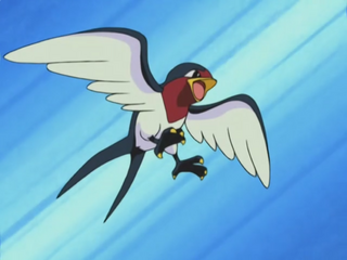 320px-Ash_Taillow.png