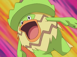 Brock Ludicolo