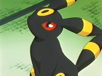EP228 Umbreon