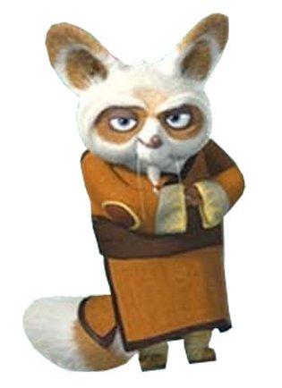 Shifu pooh 39 s adventures wiki - Kung fu panda shifu ...