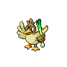 Farfetch'd NB