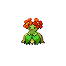 Bellossom NB