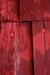 Red Wood Habitat.png