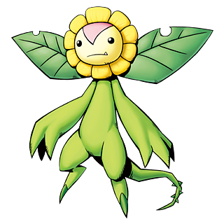 Sunflowmon b