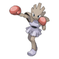 107Hitmonchan.png