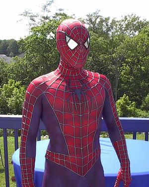 Spiderman 3 Movie Replica Costume Black Symbiote Suit ... |Black Spiderman Costume Replica