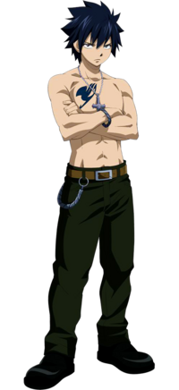http://images2.wikia.nocookie.net/__cb20101012010957/fairytail/images/thumb/2/2a/Gray_Anime_S2.png/200px-Gray_Anime_S2.png