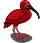 Scarlet Ibis-icon