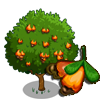 Wild Cashew Tree-icon