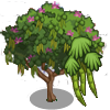 Mountain Ebony Tree-icon