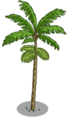 Peach Palm Tree1-icon