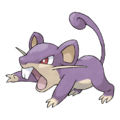 019Rattata.png