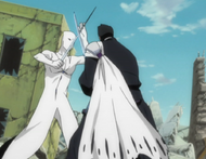 Isshin Battles Aizen