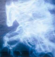 Ginny&#39;s horse Patronus