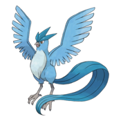 144Articuno
