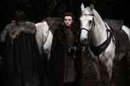 Robb &amp; his horse