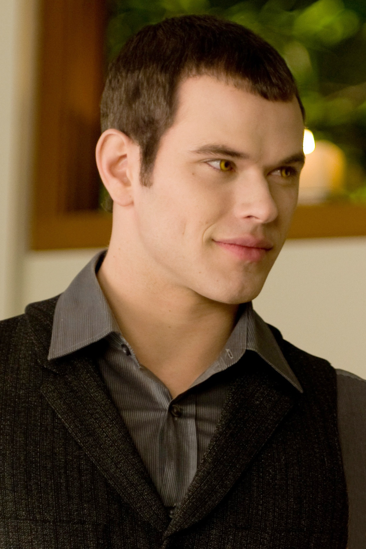 http://images2.wikia.nocookie.net/__cb20110112003810/twilightsaga/images/e/ee/Emmett_Cullen_New_Moon_Bella's_Party.jpg