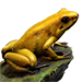 Item goldenpoisonfrog 01