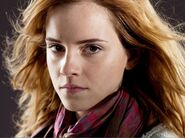 DH1 Hermione Granger headshot 01
