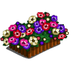 Anemone (decoration)-icon
