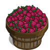 Straspberry Bushel-icon