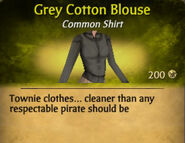 Grey Cotton Blouse