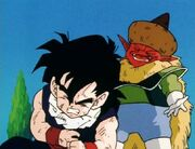 DRAGONBALL Z 19-1311-1-1