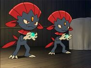 Kidd Weavile