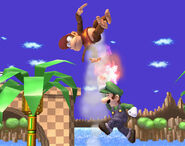 Luigi Diddy Kong fly