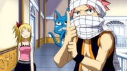 Natsu and Happy as a ninja