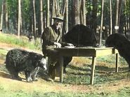 Bear dinner 1922