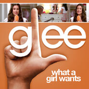 Glee - what a girl wants