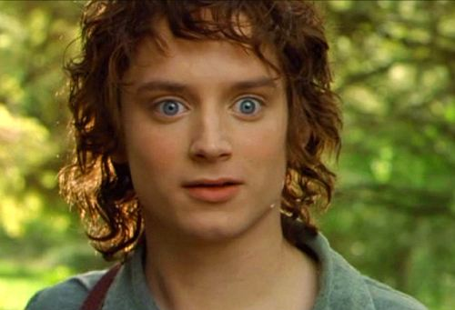 what if Nintenbrony forums was in middle earth? Frodo