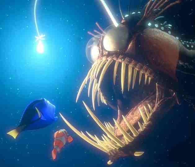 finding nemo dory. Finding nemo dory marlin