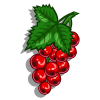 Red Currant-icon