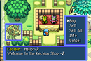 Kecleon shop2