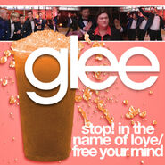 Glee - stop in the name of love